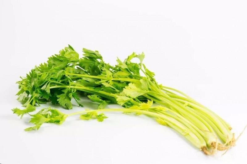 芹菜是一种绿色减肥食物