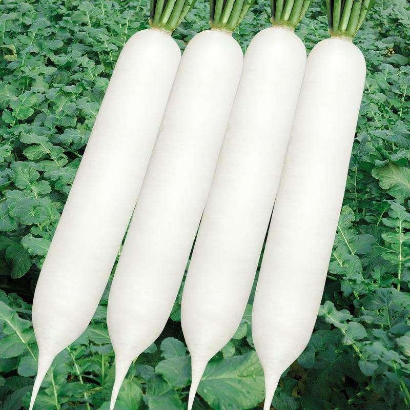 三大减肥蔬果的瘦身效果怎么样